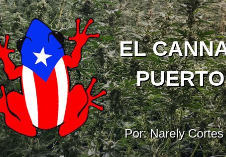 El cannabis en Puerto Rico