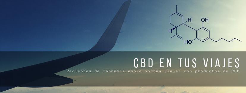 CBD en tus Viajes - Cannalatino