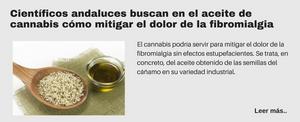 Científicos andaluces buscan en el aceite de cannabis cómo mitigar el dolor de la fibromialgia