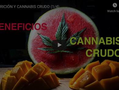 BENEFICIOS DEL CANNABIS CRUDO
