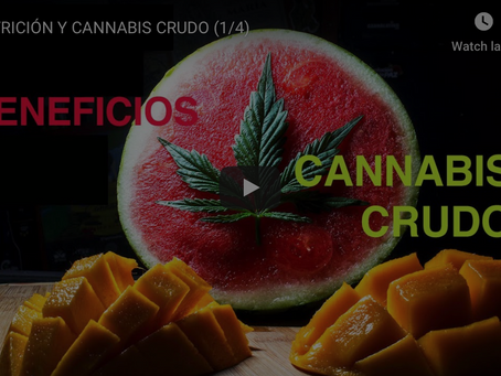 BENEFICIOS DEL CANNABIS CRUDO