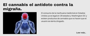 El cannabis el antídoto contra la migraña