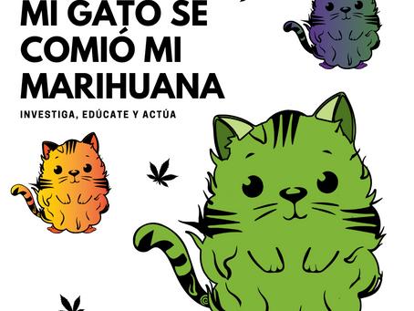 Mi Gato se comió mi Marihuana por Cannalatino.