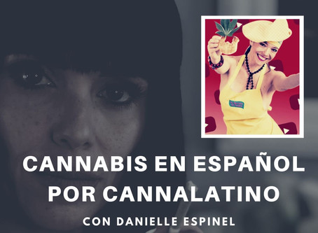 Cannabis en Español por Cannalatino - Episodio 7 con Talita Chef desde Argentina.