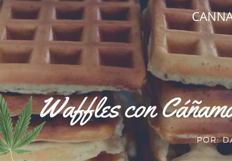 Waffles de Cáñamo con CBD