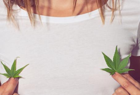 Sexo, mujeres y cannabis: sigue la mata dando.