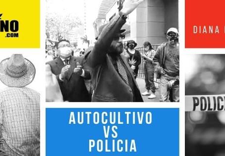 Autocultivo VS Policía