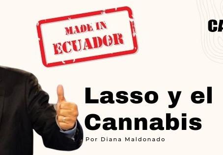 Lasso y el Cannabis