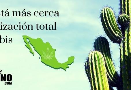 México está más cerca de la legalización total del cannabis