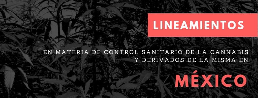 Lineamientos en materia de control sanitario de la cannabis y derivados de la misma en México por Cannalatino