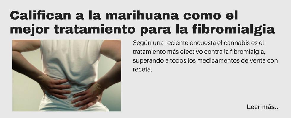 Califican a la marihuana como el mejor tratamiento para la fibromialgia