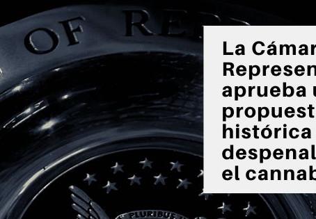 La Cámara de Representantes aprueba una propuesta de ley histórica para despenalizar el cannabis.