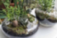 Incorporate-Plants-into-Home-Decor-With-