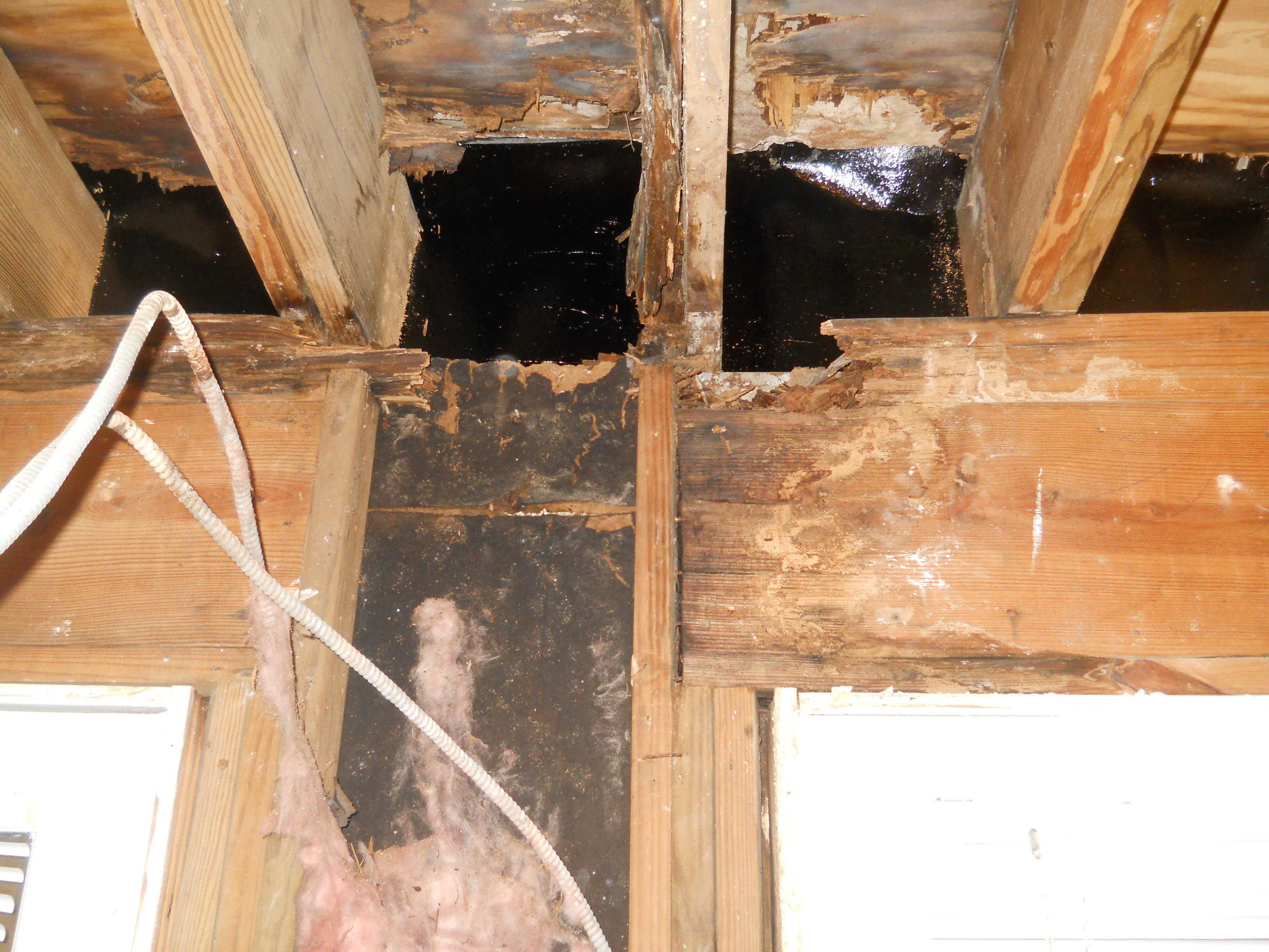 Water damaged interior wood framing