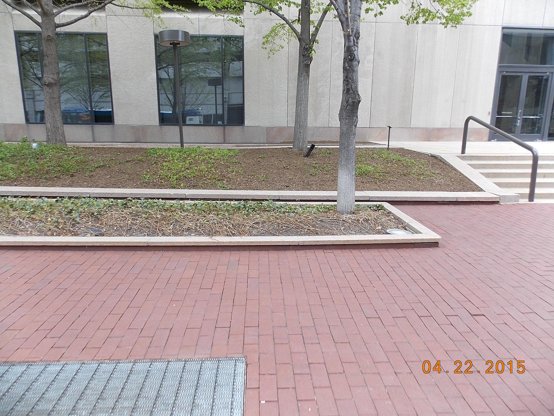 Initial sidewalk-planter configuration