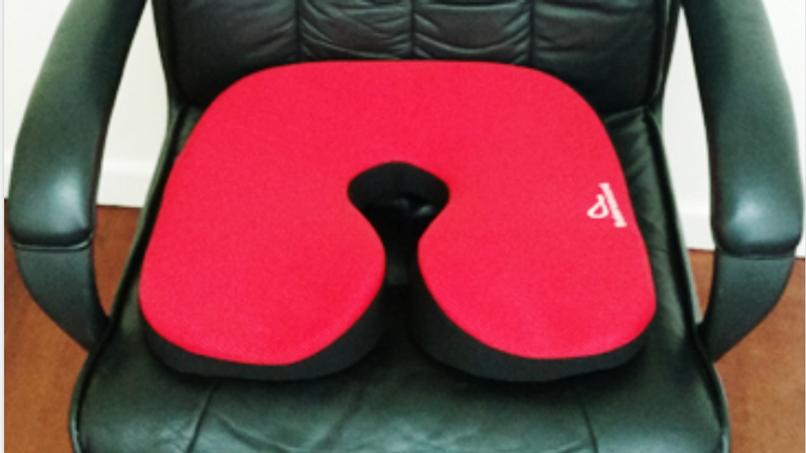Chiropractic Sitting Cushion