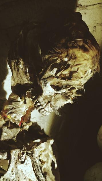 Amsterdam Catacombs Corpse.jpg