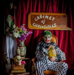 CabinetofCuriosties_FreakFair-17.jpg