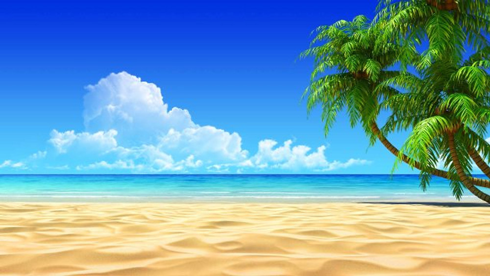 beach-palm-sea-tropical-awesome