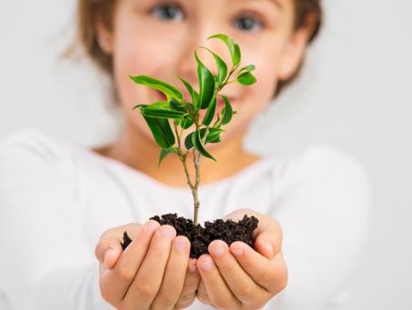 Projeto educação ambiental na quarentena: inovação, conscientização e aproximação da Universidade