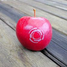 Logo-Apfel (EUROfusion)