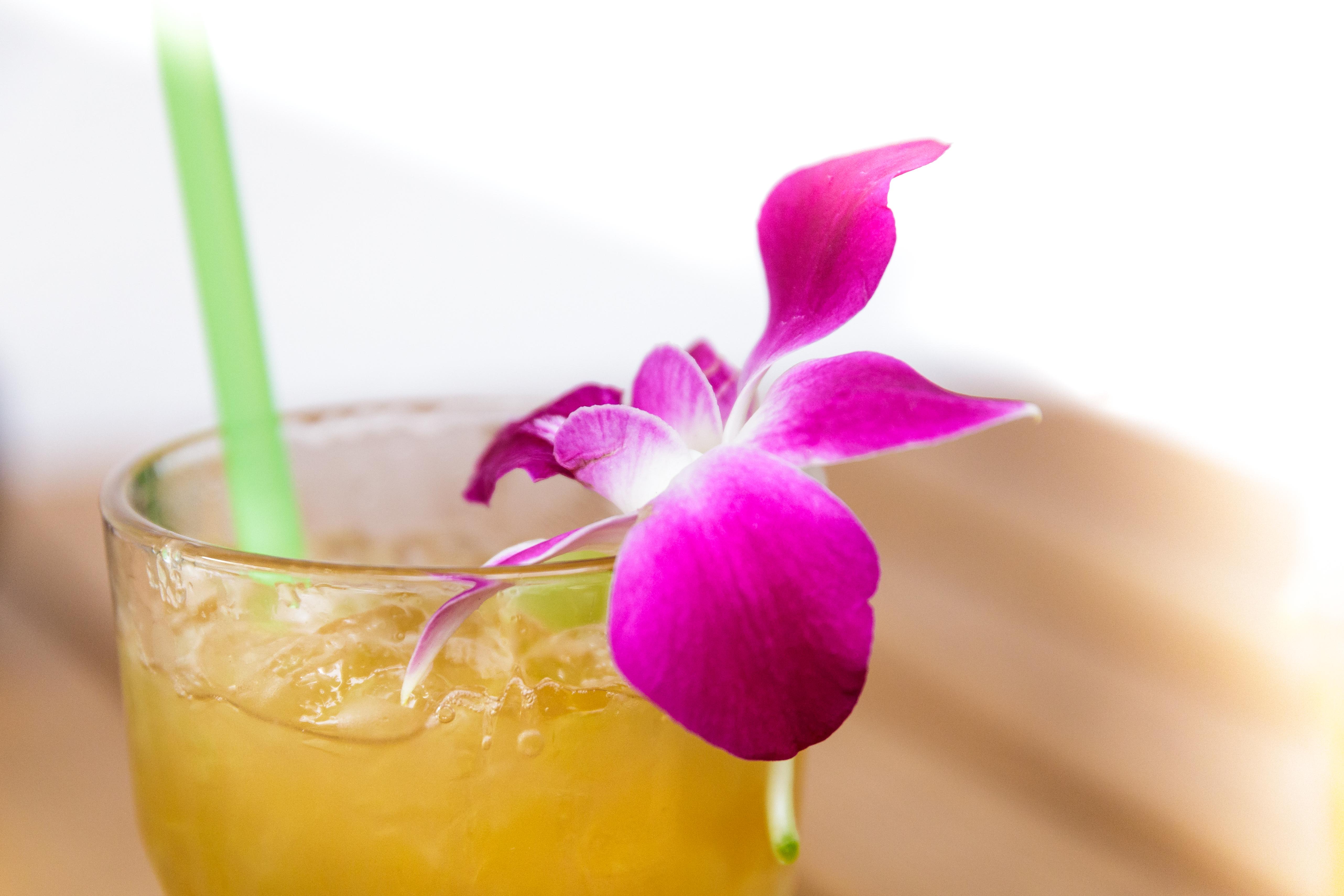 Mai Tai Cocktail mit Orchideenblüte