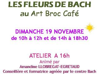 Les fleurs de Bach au Art Broc Café