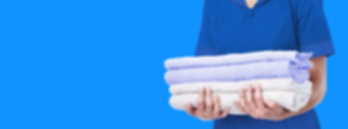 Laundry and Organization Services Grand Rapids