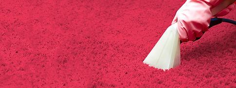 firma sprzątająca cleaner bielso biała katarzyna ramos