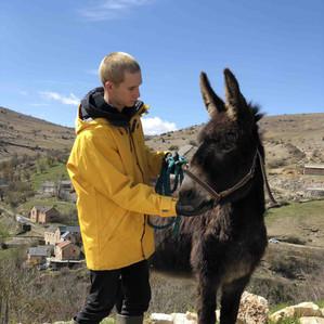 Alex et son âne