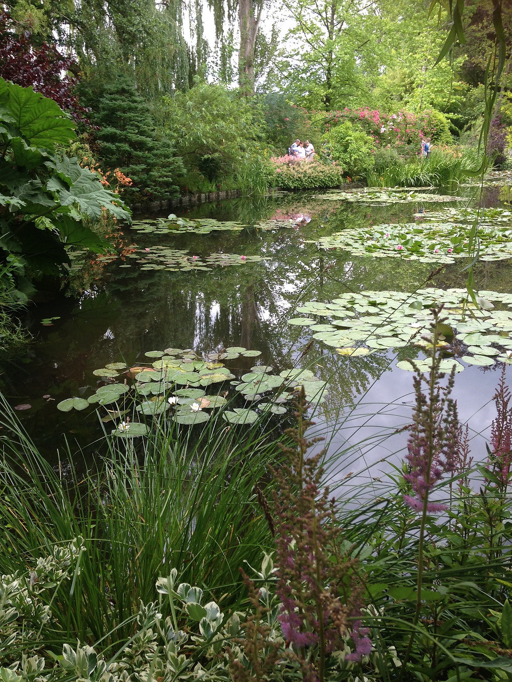 Monet's Lilypond, Giverny