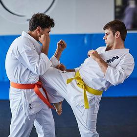 Karate20.jpeg