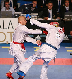 Karate_WC_Tampere_2006-2.jpg