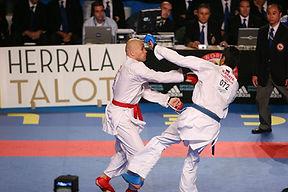 אליפות העולם בטמפרה - 2006