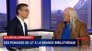 reportage tv 2.PNG