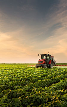Tractor%20spraying%20pesticides%20at%20%