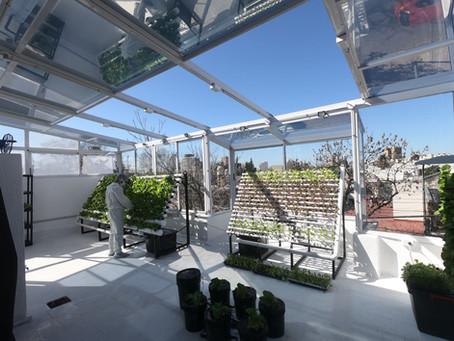 Plataformas de cultivos Urbanos
