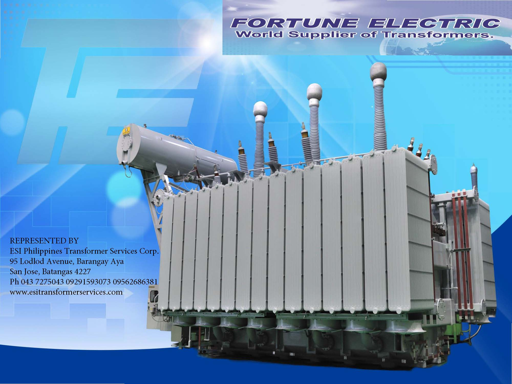 Fortune Transformers