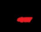 BiZ417_Logo_BlackRed.png