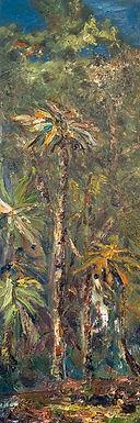 Magical Palm Tree