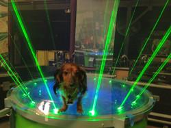 Laser Sausage