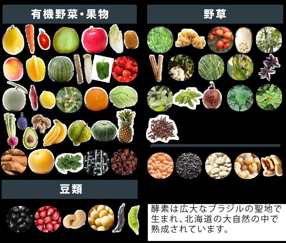 野菜 日本語.png