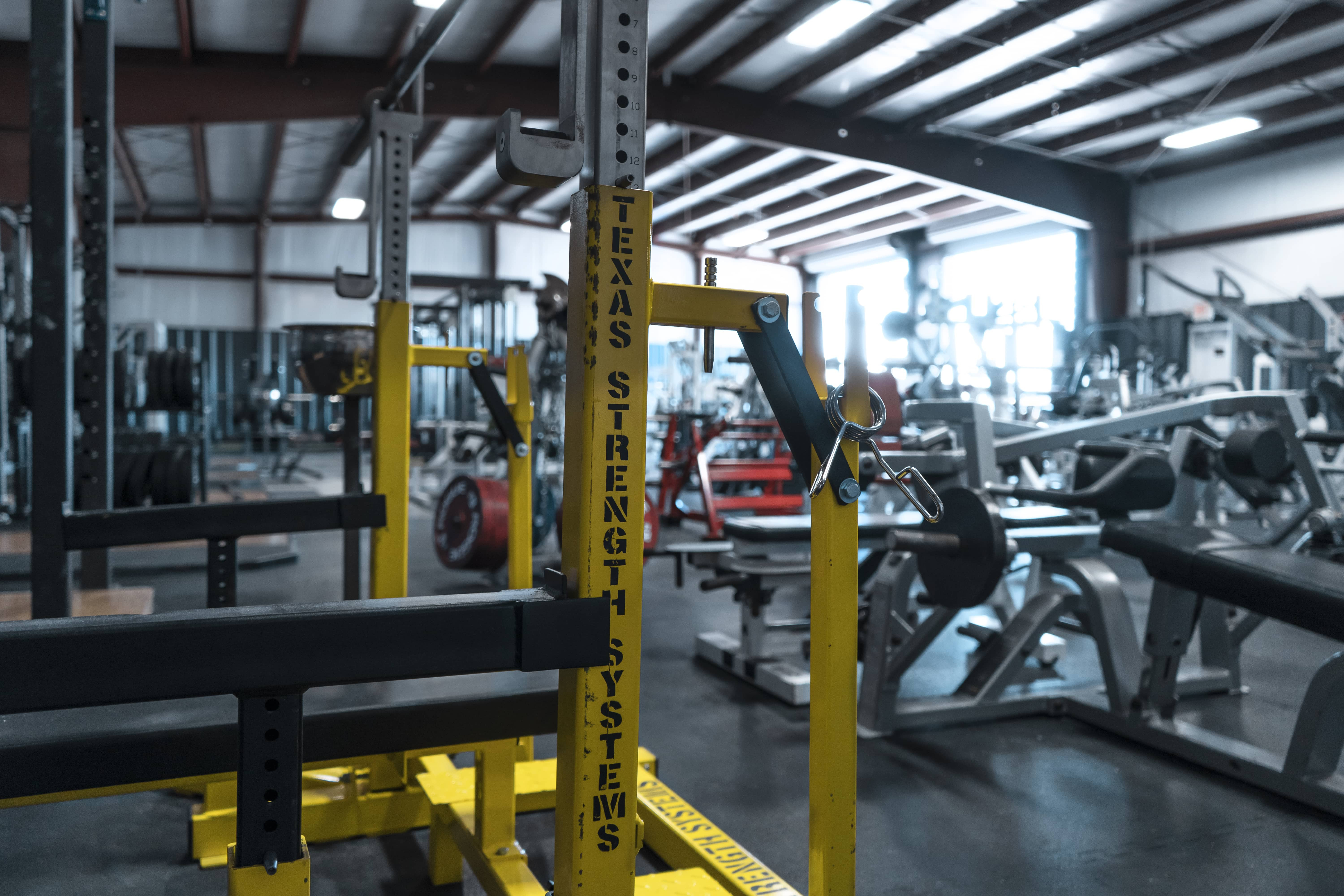 Equipment | Roman Iron Gym | Powerlifting | Calibrated Weights |
