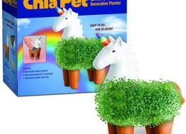 Chia Pet Unicorn, Llama, Hedgehog and More!