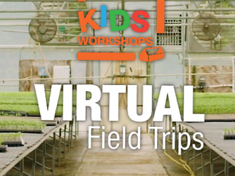 Home Depot Adds Virtual Field Trips To Kids DIY Workshop