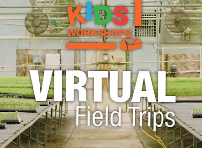 Home Depot Adds Virtual Field Trips To Kids DIY Workshop
