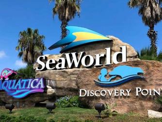 SeaWorld & Busch Gardens Annual Platinum Pass Only $149.99 | San Antonio, Texas