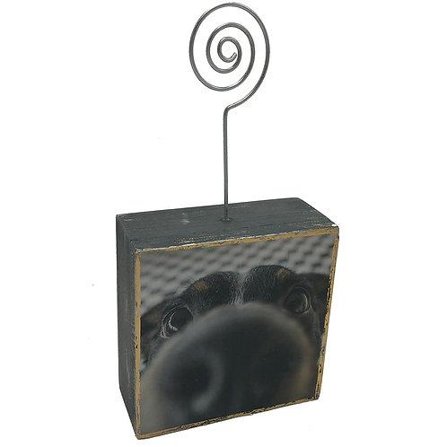 Snout Photo Block
