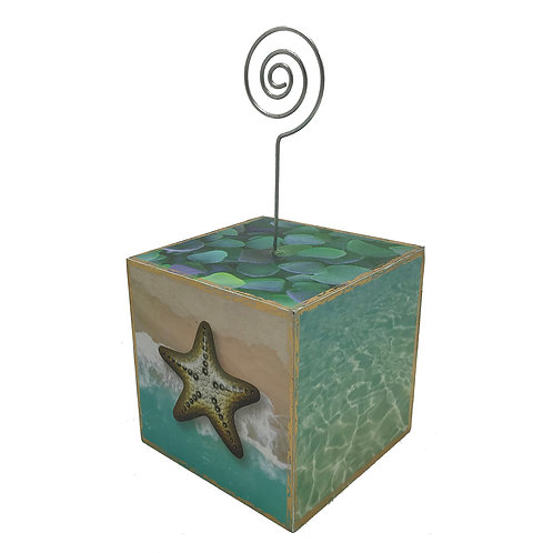 Small Starfish Photo Cube