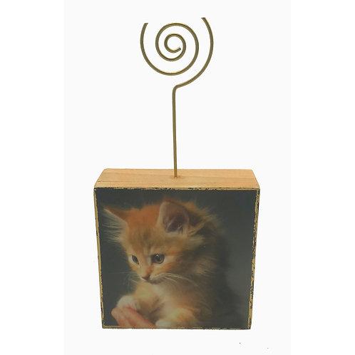 Photo Block Kitten